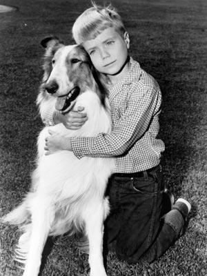 Lassie und Timmy